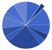 Renovation costs pie chart