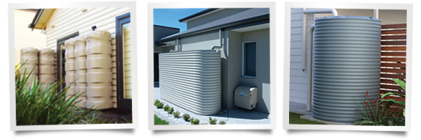 Brisbane Water Tank News